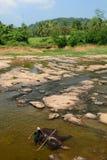 Mahout che lava i suoi elefanti a Maha Oya River Orfanotrofio dell'elefante di Pinnawala La Sri Lanka fotografia stock