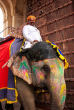 Mahout on decorated elephant entering Suraj Pol Sun Gate to Ja. Leb Chowk in Amber Fort, Rajasthan, India. Elephant rides are popular tourist attraction in Amber Stock Image