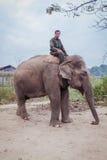 Mahout die een olifant, het nationale park van Chitwan berijden Royalty-vrije Stock Foto's