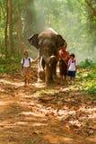 Mahout och studenter i likformig som går samman med elefant på royaltyfri fotografi
