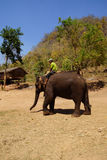 Mahout rides his elephant Royalty Free Stock Image