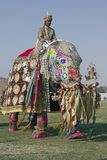 Mahout riding a decorated elephant. Decorated elephant and mahout at the annual elephant festival in Jaipur, India royalty free stock image