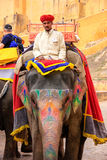 Mahout riding decorated elephant on the cobblestone path to Ambe. R Fort near Jaipur, Rajasthan, India. Elephant rides are popular tourist attraction in Amber Stock Photo