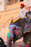 Mahout riding decorated elephant inside Jaleb Chowk main courty. Ard of Amber Fort, Rajasthan, India. Elephant rides are popular tourist attraction in Amber Fort Royalty Free Stock Photo