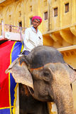 Mahout riding decorated elephant inside Jaleb Chowk main courty. Ard of Amber Fort, Rajasthan, India. Elephant rides are popular tourist attraction in Amber Fort stock photos
