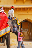Mahout riding decorated elephant inside Jaleb Chowk main courty. Ard of Amber Fort, Rajasthan, India. Elephant rides are popular tourist attraction in Amber Fort Stock Photo