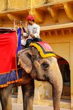 Mahout riding decorated elephant inside Jaleb Chowk main courty. Ard of Amber Fort, Rajasthan, India. Elephant rides are popular tourist attraction in Amber Fort stock image