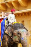 Mahout riding decorated elephant inside Jaleb Chowk main courty. Ard of Amber Fort, Rajasthan, India. Elephant rides are popular tourist attraction in Amber Fort royalty free stock image