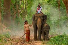 Mahout som tar elefanten till wlak för att rida för studenter arkivfoton