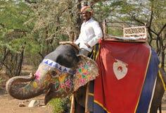 Mahout y elefante Imagenes de archivo