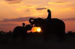 Mahout y elefante de la silueta Imagen de archivo