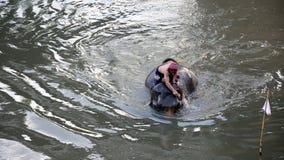Mahouts bespatte water op olifanten stock footage
