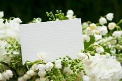 Mai Photo stock