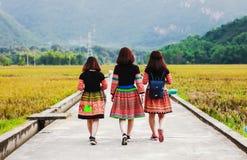 Mai Chau, Vietname - 4 de novembro de 2017: Mulheres da minoria étnica do mong do ` de H ela atrás traseira, Mai Chau, Hoa Binh,  fotografia de stock