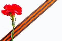 9 mai fond de fête de Victory Day Oeillet rouge enveloppé dans le ruban de St George d'isolement sur le blanc Photo libre de droits