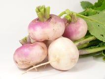 Mai-Karotten Lizenzfreies Stockfoto
