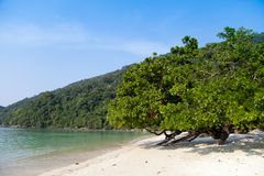 Mai ngam beach at Surin Island Royalty Free Stock Image