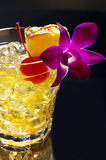 Mai Tai Royalty Free Stock Image