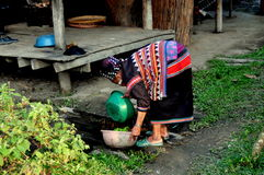 MAI van Chiang, Thailand: De Groenten van de Was van de vrouw Royalty-vrije Stock Foto's
