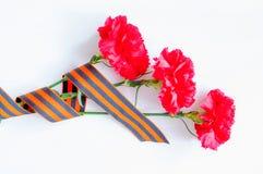 9. Mai Victory Day-Hintergrund Rote Gartennelken eingewickelt in St- Georgeband auf weißem Hintergrund Stockfotografie