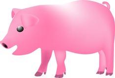 maiale con il piatto Fotografia Stock