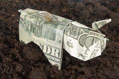 Maiale di origami del dollaro sulla terra Fotografia Stock Libera da Diritti