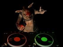 Maiale DJ di Punky Fotografie Stock Libere da Diritti