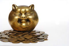 Maiale e soldi Immagini Stock