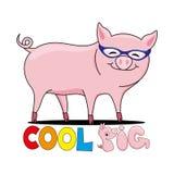Maiale fresco in occhiali da sole illustrazione di stock