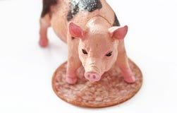 Maiale miniatura con una fetta di saussage immagini stock libere da diritti