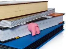 Maiale rosa dell'asino, mezzo funzionamento divertente dell'animale domestico come segnalibro Fotografie Stock Libere da Diritti