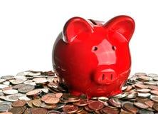 Maiale, soldi e risparmio Fotografia Stock Libera da Diritti