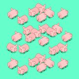 Maiali del gregge Animale da allevamento del maiale Illustrazione di vettore illustrazione di stock