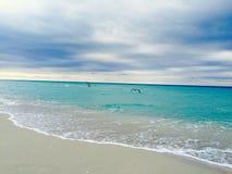Maiami strand Arkivfoto