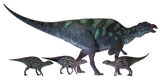 Maiasaura Dinosaur with Babies. Maiasaura is a large duck-billed dinosaur that lived in North America in the Cretaceous Era shown here with several hatchlings Stock Images