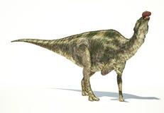 Maiasaura dinosaur, photorealistic representation. Dynamic view. Royalty Free Stock Images