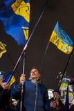 Maidan -有民族主义党斯沃博达旗子的年轻活动家  库存照片