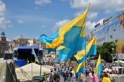 Maidan i den ukrainska huvudstaden Arkivbilder