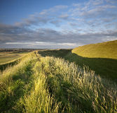 Maiden Castle. Late evening sunshine rakes across the Iron Age hill fort of Maiden Castle in Dorset, England. Dorchester, the County Town of Dorset, is visible royalty free stock images