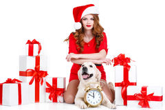 Maiden and labrador dog with Christmas gifts Stock Photos