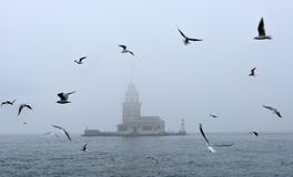 Maiden's Tower in foggy morning Istanbul, Turkey Stock Photos