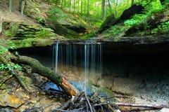 Maidenhair faller skuggadelstatsparken Indiana Arkivbild