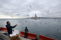Maidens Tower in Istanbul, Turkish bagel salesman. Istanbul, Turkey - December 04, 2013: A pretzel vendor and a man feeding seagulls appear Stock Images