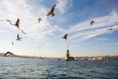 Maidens Tower located in Istanbul royalty free stock photo