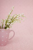 Maiglöckchen in der rosa Schale Lizenzfreie Stockbilder