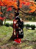 Maiko和红色叶子,京都日本 图库摄影
