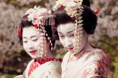 Maiko Royaltyfri Bild