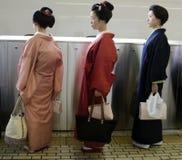 Maiko in der Linie Stockfotografie