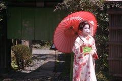 Maiko e geisha Immagine Stock