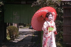 Maiko en geisha Stock Afbeelding
